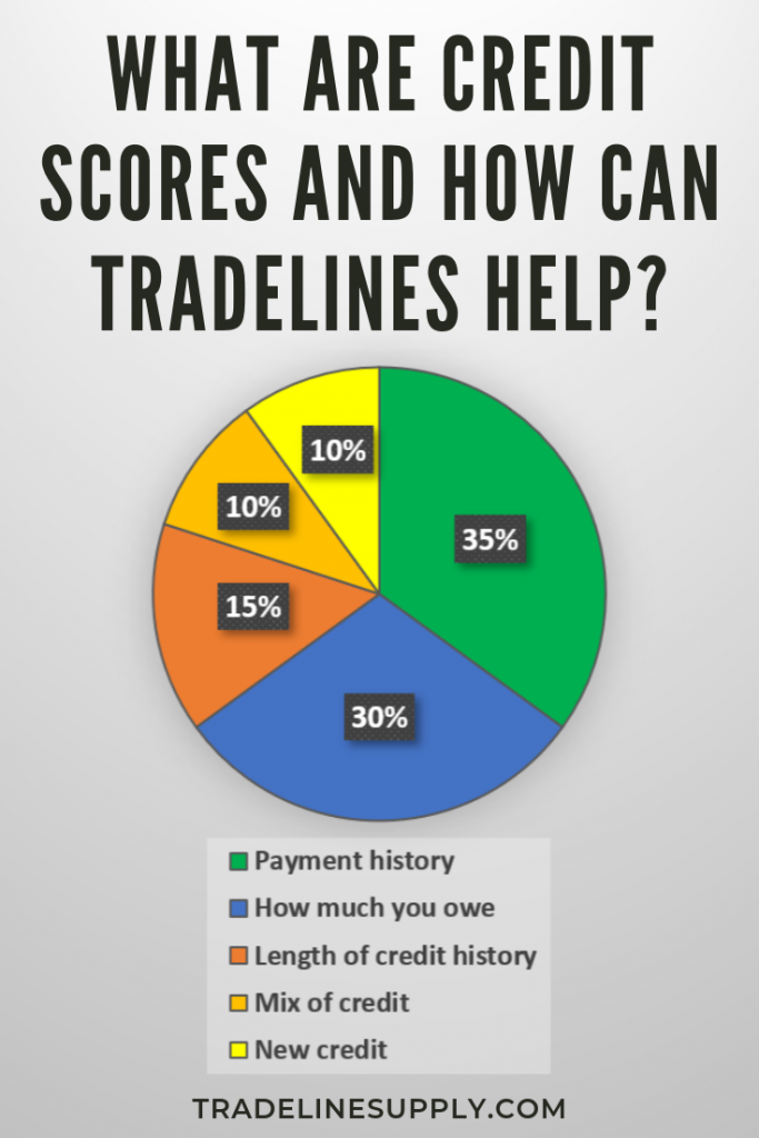 What Are Credit Scores and How Can Tradelines Help? Pinterest graphic