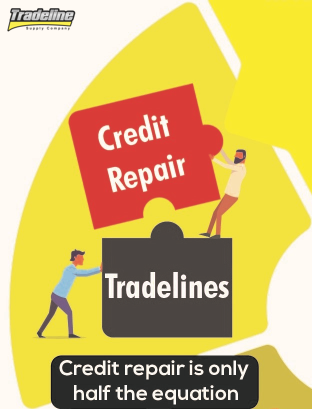 Credit repair and tradelines work best together. Click to go to the full version of our infographic.