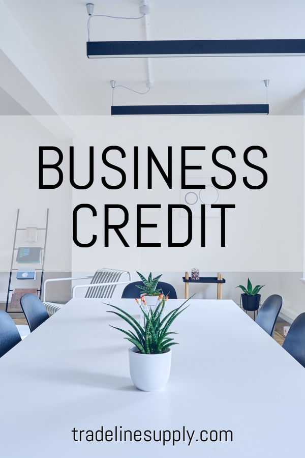 Business Credit Pinterest graphic