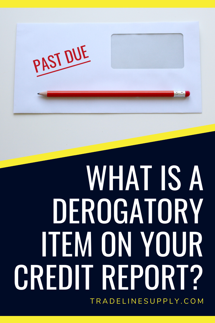 What Is a Derogatory Item on Your Credit Report? - Pinterest
